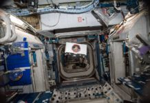 An Anheuser-Busch CubeLab floating inside of the International Space Station after project completion.
